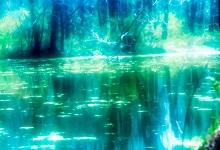 ashinari-泉の光2